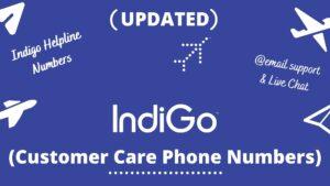 indigo customer care
